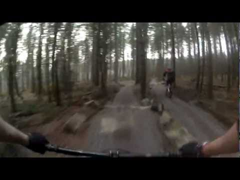Sherwood Pines Mountain Bike Centre Trail Guide And Reviews