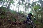 Delamere Forest 17-05-13