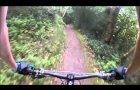 Horner Woods Exmoor MTB