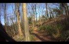 50 Acre Wood