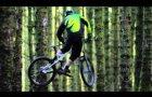 Davagh Forest Trails, Northern Ireland