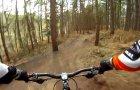 Delamere Forest April 2012
