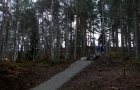 Grantown Woods - Mountain Bike