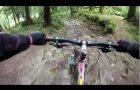 MBR trail at Coed y Brenin on a Trek Remedy