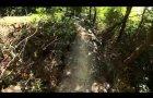 Castlewellan mtb black trail