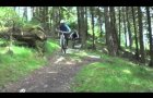 Trail Guide - Mabie Forest