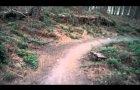 The Kitchener - Sherwood Pines!