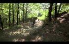 Bikepark Winterberg Giro Freecross 2012
