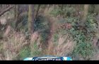 BeeCraigs MTB/Mountain Biking