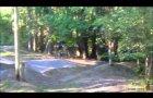 Avon Tyrrell mountain bike track