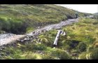 Glencoe Mountain Downhill