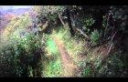 Mountain Biking Wellington, New Zealand - Makara Peak Mountain Bike Park