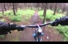 Montrose Mtb Trails ,Angus ,Scotland