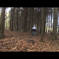 Downhill mountain biking at Helens Tower