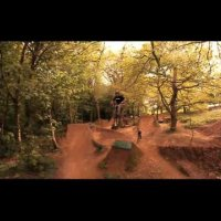 Moos Trails - Swansea