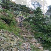 Ullswater Shoreline - Lake District